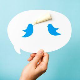 6 tuits que nos han alegrado el verano