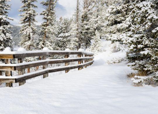 Cosas que ocurren cuando nieva en España